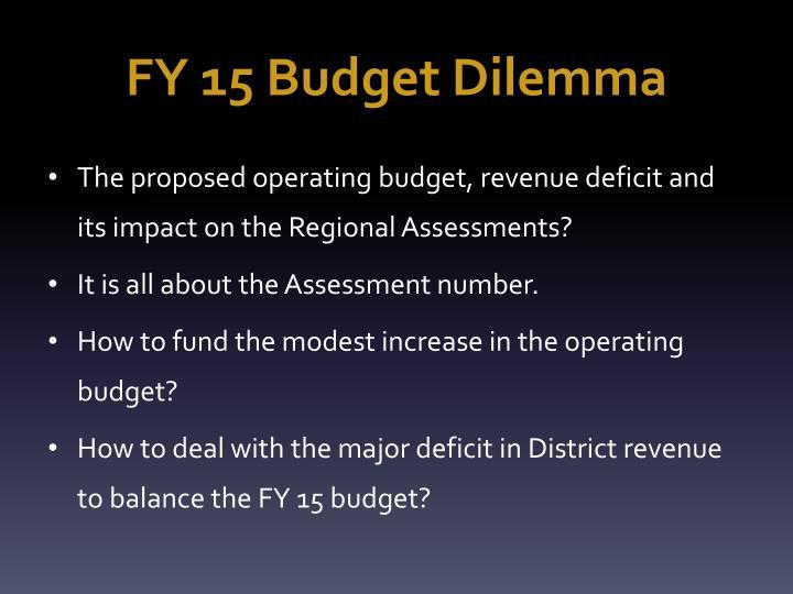 FY 15 Budget Dilemma