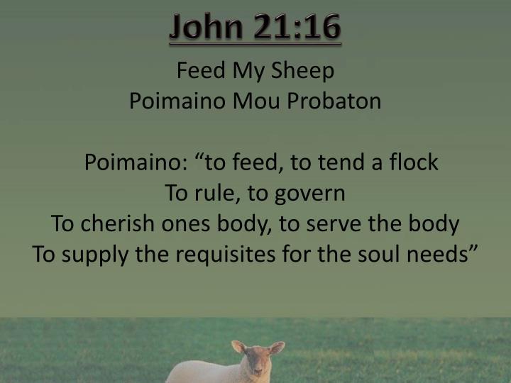 John 21:16