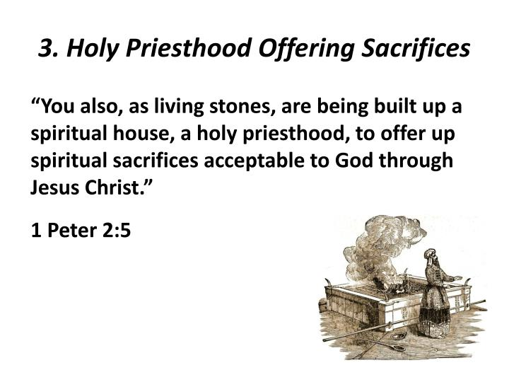 3. Holy Priesthood Offering Sacrifices