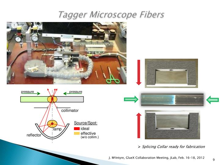 Tagger Microscope Fibers