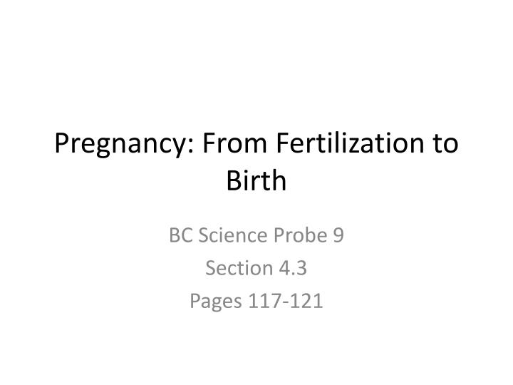 Pregnancy from fertilization to birth