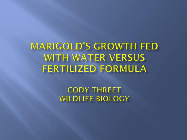 Marigold s growth fed with water versus fertilized formula cody threet wildlife biology