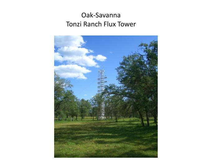 Oak-Savanna