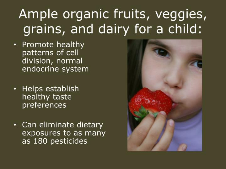 Ample organic fruits, veggies, grains, and dairy for a child:
