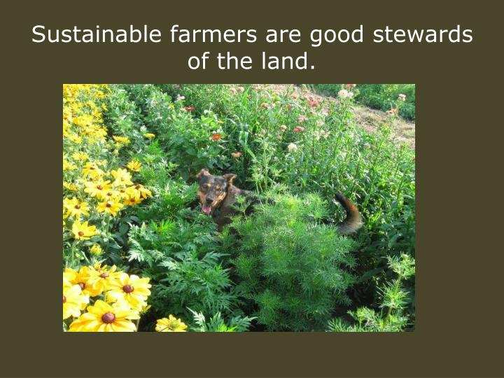 Sustainable farmers are good stewards of the land.