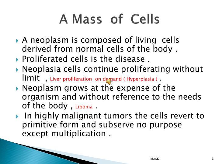 A Mass  of  Cells