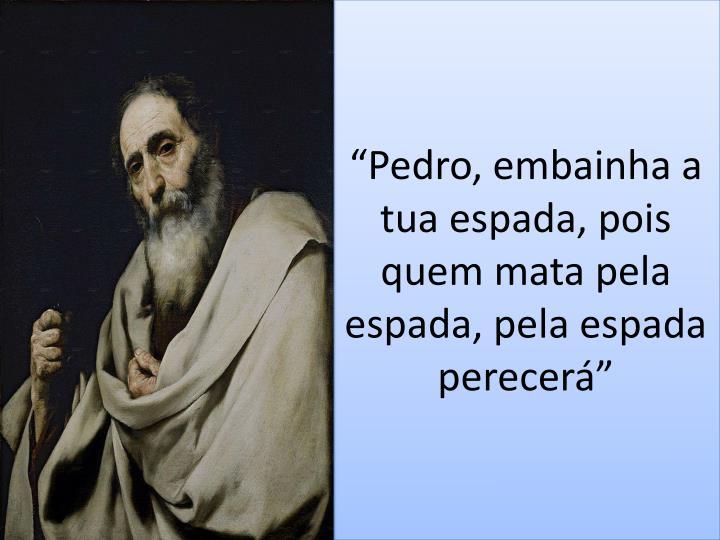 """""""Pedro, embainha a tua espada, pois quem mata pela espada, pela espada perecerá"""""""