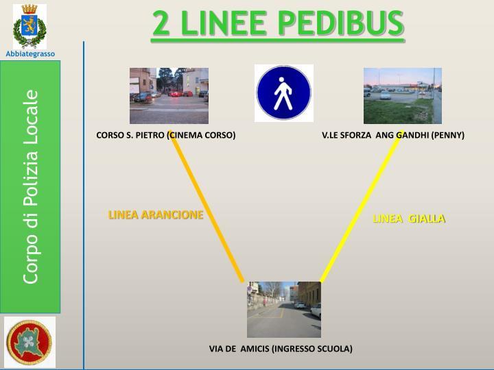 2 LINEE PEDIBUS