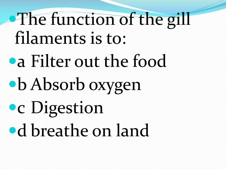 The function of the gill filaments is to: