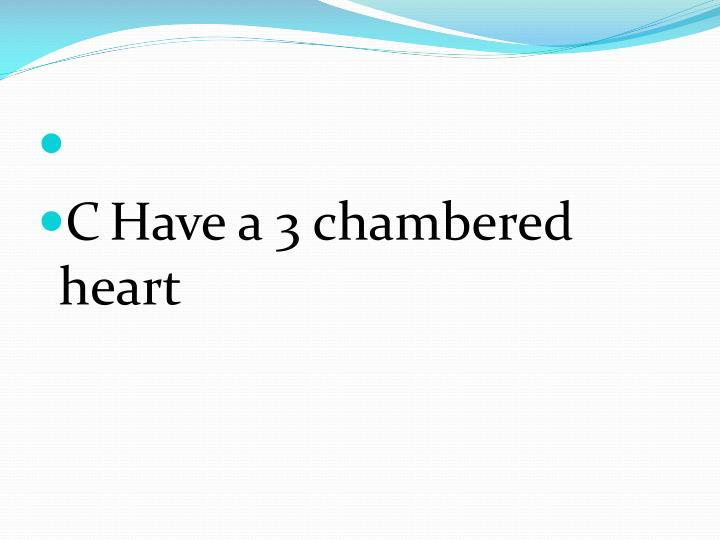 CHave a 3 chambered heart