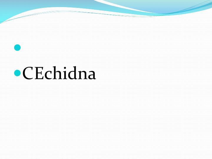 CEchidna