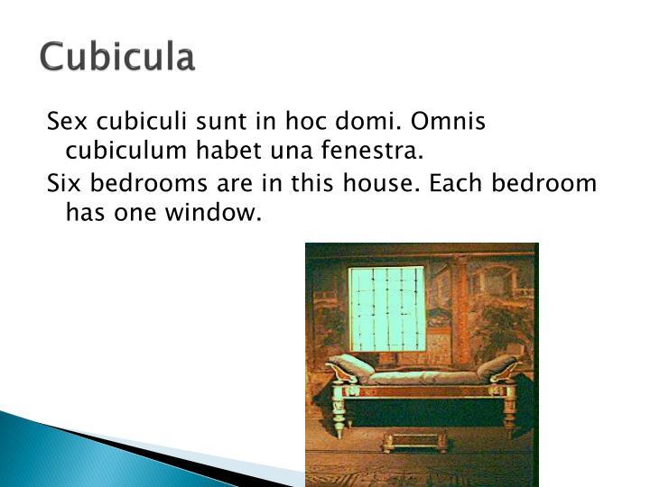 Cubicula