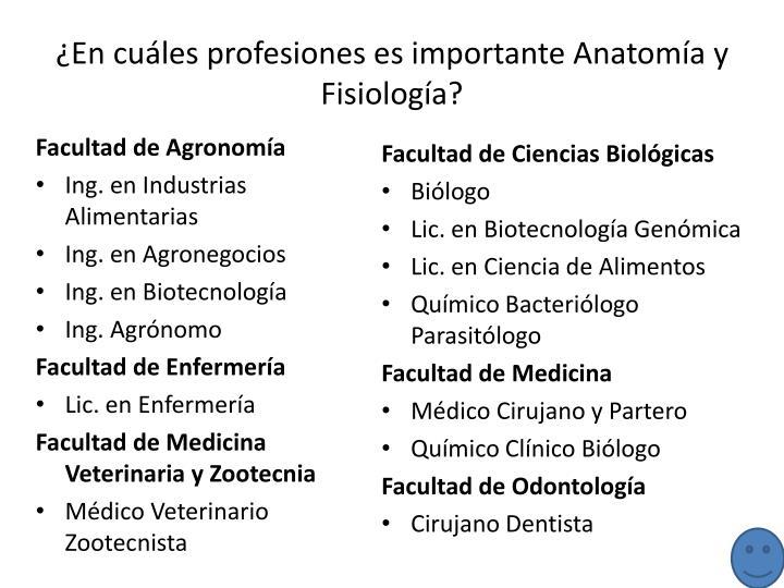 ¿En cuáles profesiones es importante Anatomía y Fisiología?