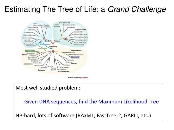 Estimating The Tree of Life: a