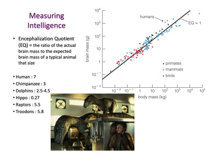 measuring intelligence How to accurately judge someone's intelligence  what's the best way to measure it  that's not to say that iq tests are the only way to measure intelligence.