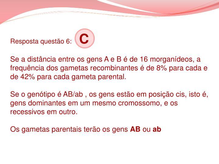 Resposta questão 6: