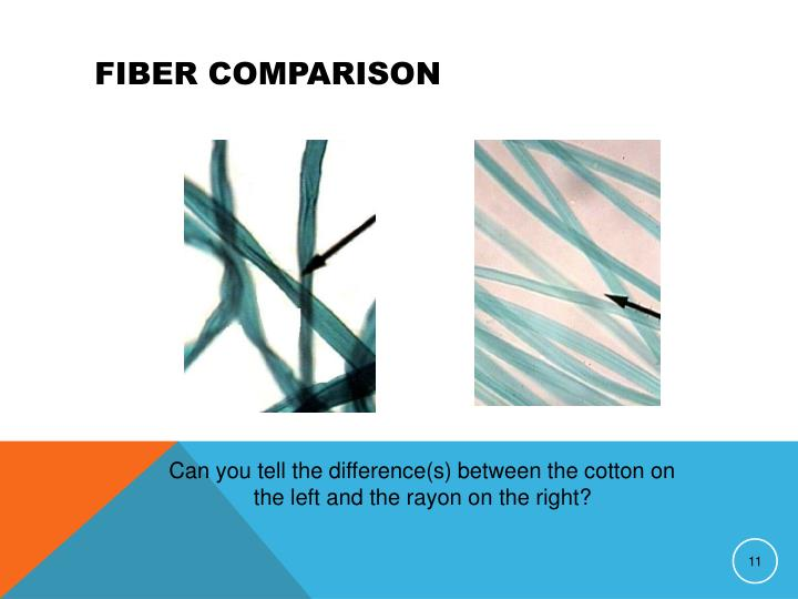 Fiber Comparison