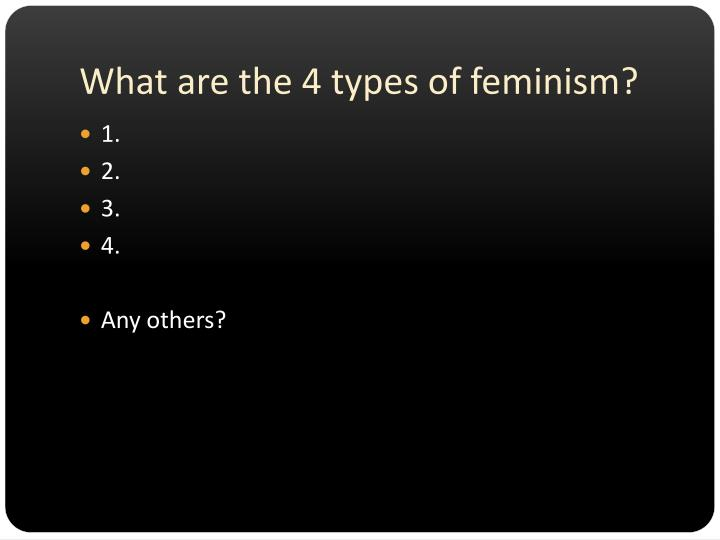 What are the 4 types of feminism?