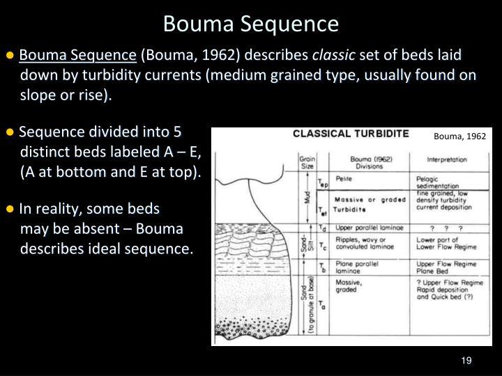 Ppt - Facies  Turbidites Powerpoint Presentation