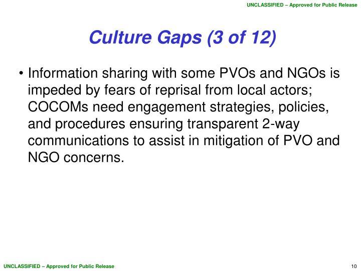 Culture Gaps (3 of 12)