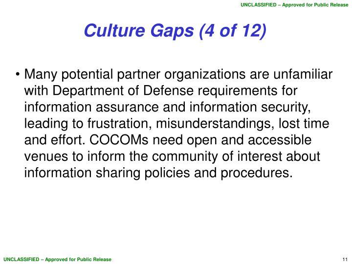 Culture Gaps (4 of 12)