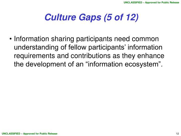 Culture Gaps (5 of 12)