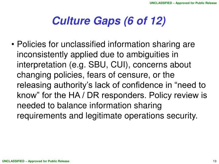 Culture Gaps (6 of 12)