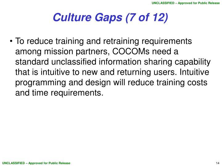 Culture Gaps (7 of 12)