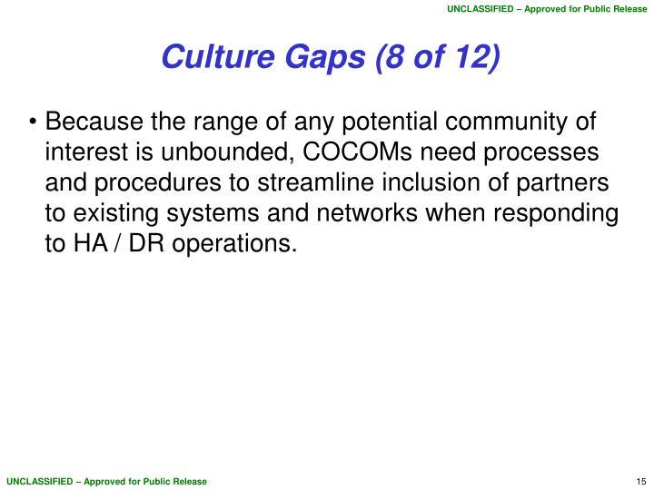 Culture Gaps (8 of 12)