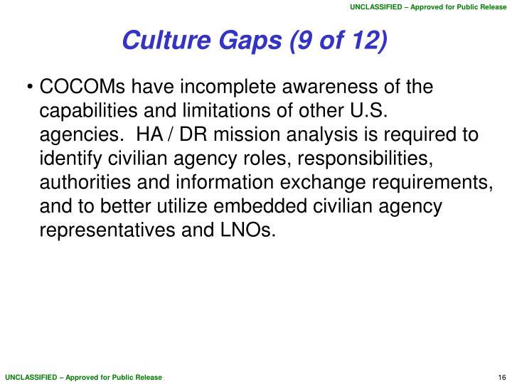 Culture Gaps (9 of 12)
