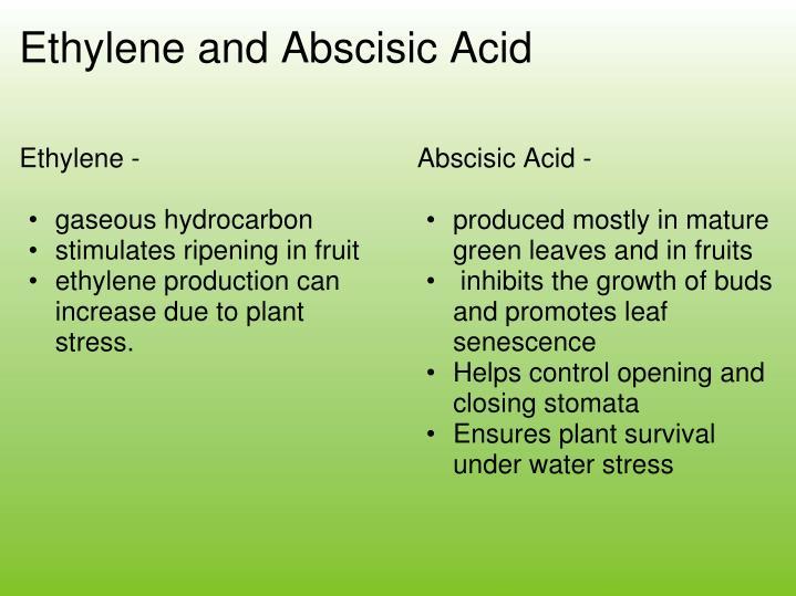 Ethylene -