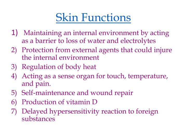 Skin Functions