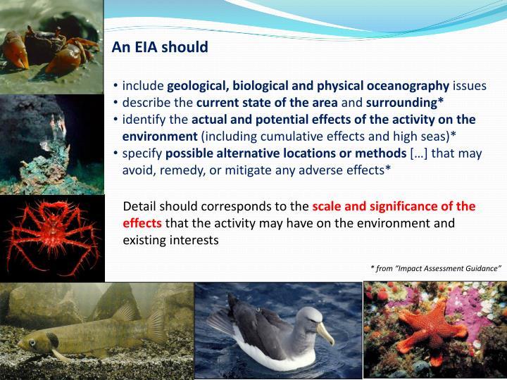 An EIA should