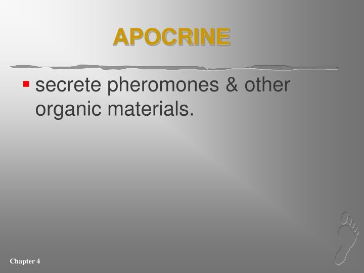 APOCRINE
