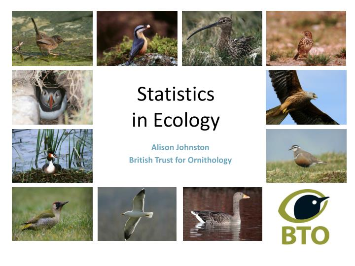 Statistics in ecology