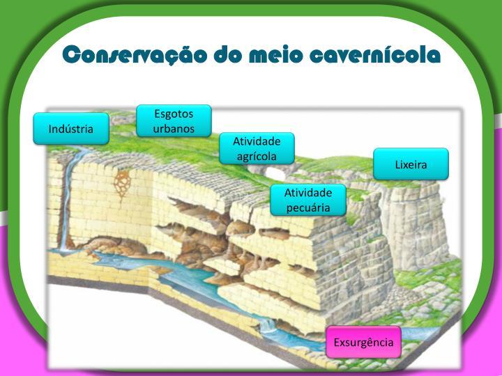 Conservação do meio cavernícola