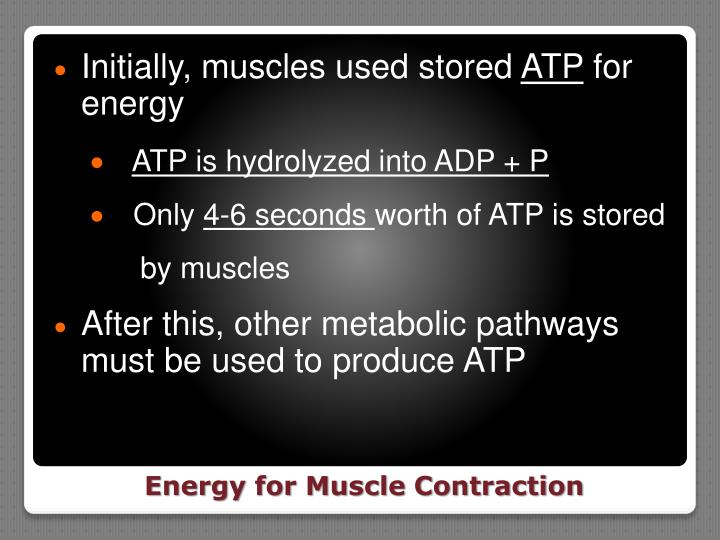 Initially, muscles used stored