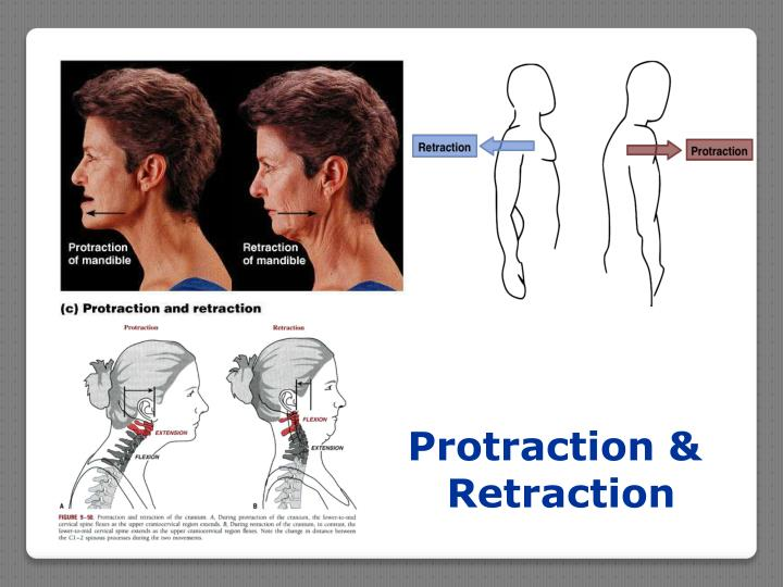Protraction &
