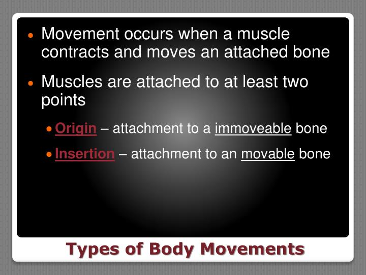 Movement occurs when a muscle contracts and moves an attached bone
