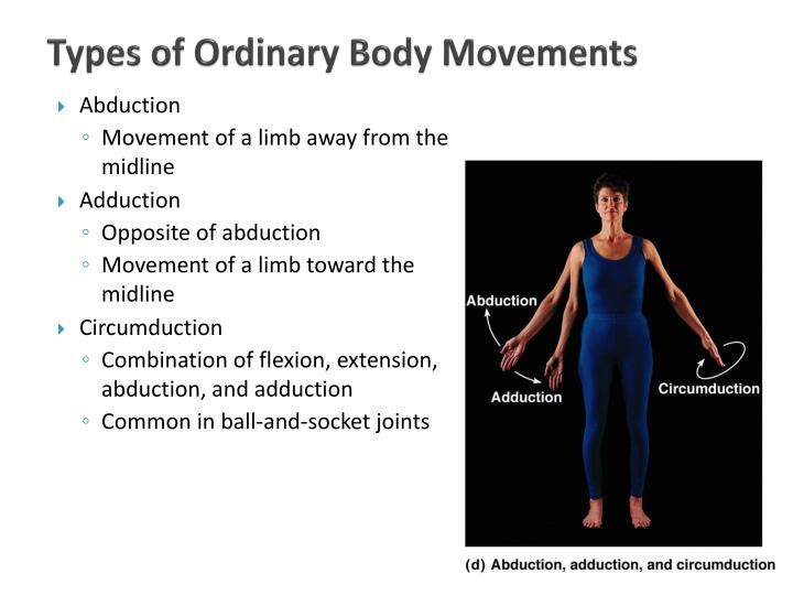 Types of Ordinary Body Movements