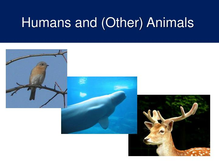 Humans and (Other) Animals