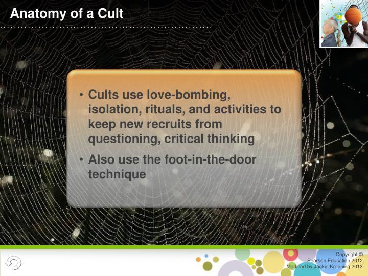 Anatomy of a Cult