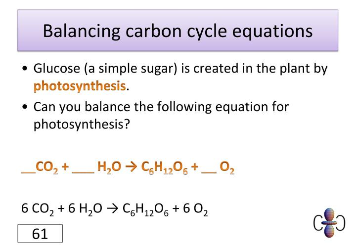 Balancing carbon cycle equations