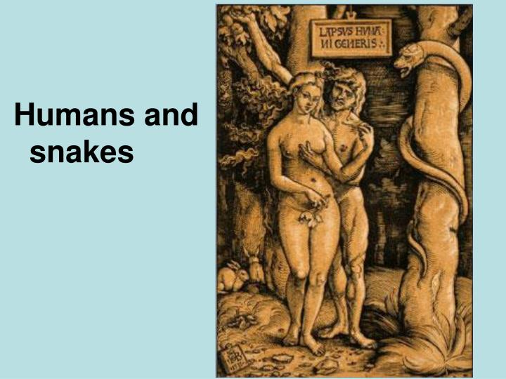 Humans and snakes