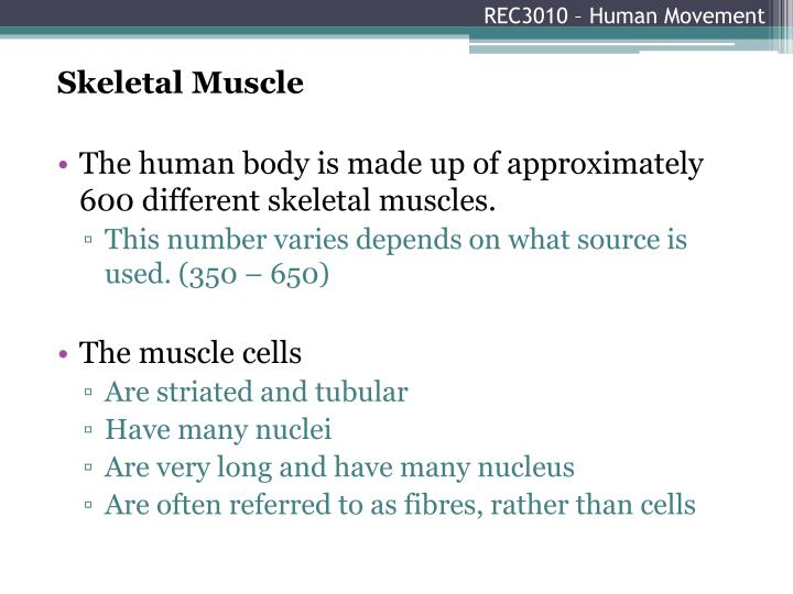 Rec3010 human movement1