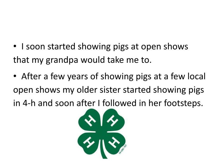 I soon started showing pigs at open shows that my grandpa would take me to.