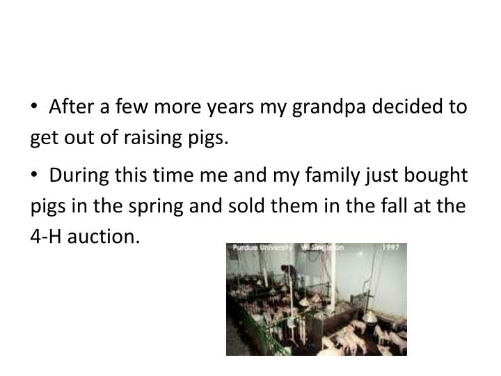 After a few more years my grandpa decided to get out of raising pigs.
