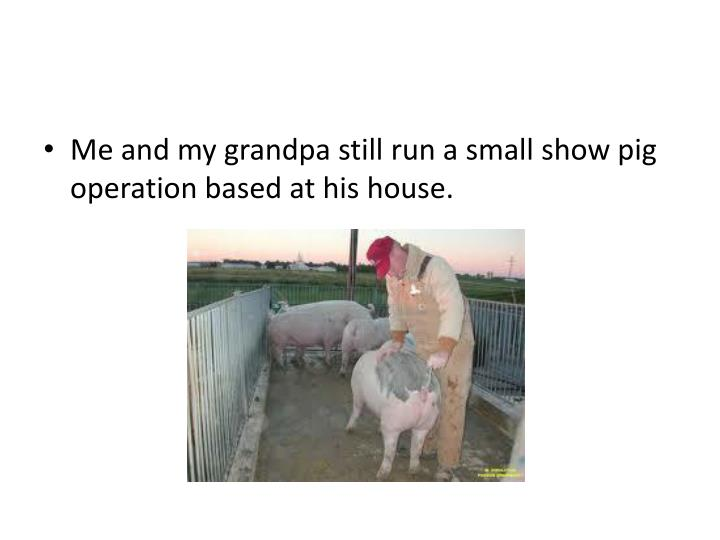 Me and my grandpa still run a small show pig operation based at his house.