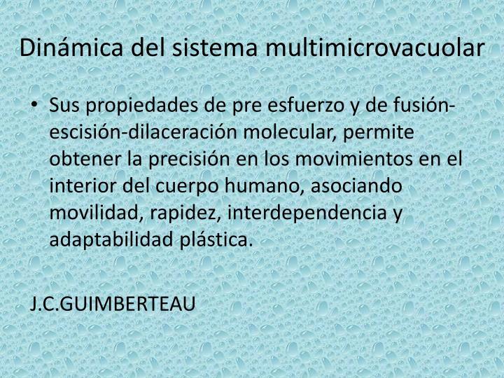 Dinámica del sistema multimicrovacuolar