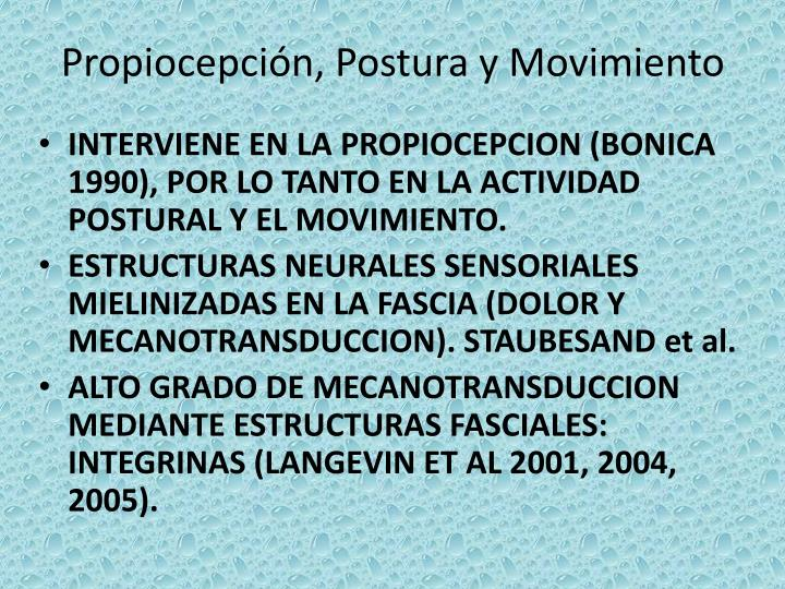 Propiocepción, Postura y Movimiento